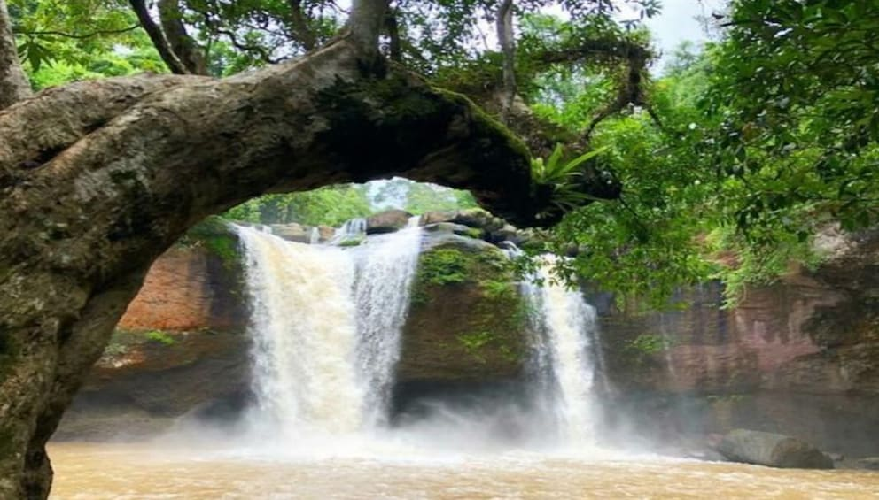 Show item 4 of 8. Khao Yai National Park with Waterfall & Hiking