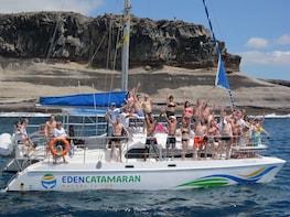 Whale watching on Catamaran