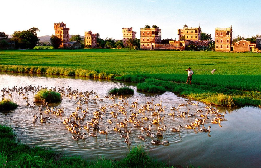 One-Day Group Tour to Kaiping Diaolou & Chikan Ancient Town