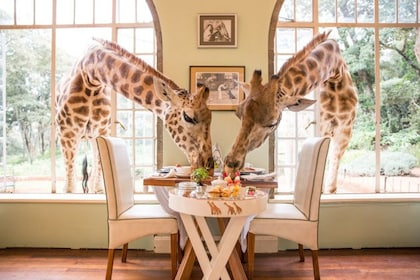 giraffe-manor-nairobi-worlds-greatest-places-2018 (1) (1).jpg