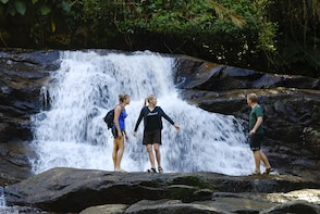 Rainforest Waterfalls - Jeep tour