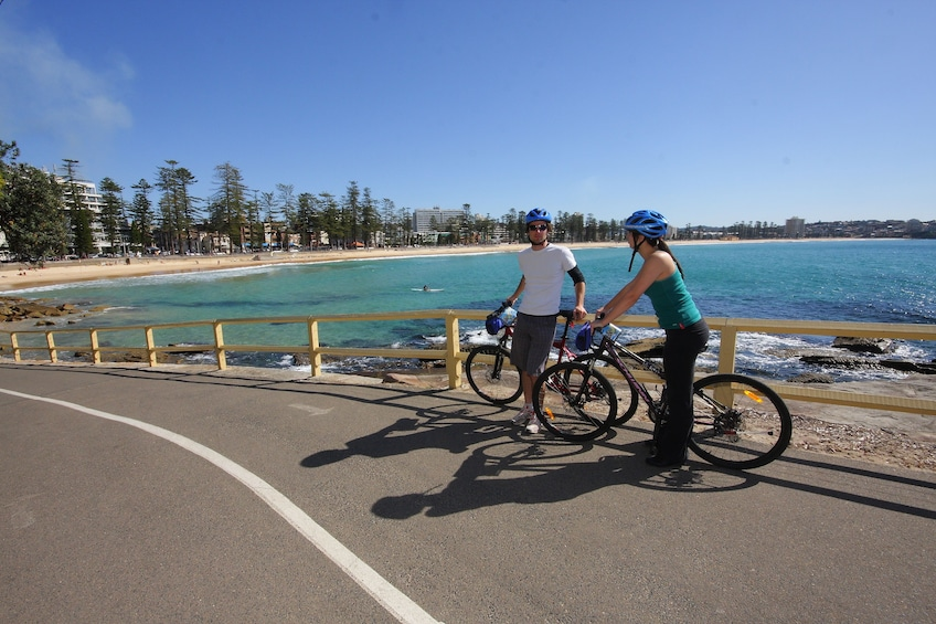 Show item 1 of 1. Manly Beach Bicycle Ride - 1 Hour