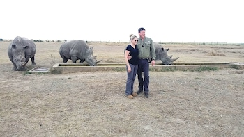 Kenya Rhino &Chimpanzee conservancy 1Day Safari at Ol-pejeta