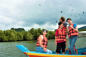 Evergreen Mangrove & Cave Exploration - Small Group Tour