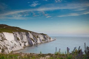 Isle of Wight Excursion