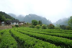 4 Days Zhangjiajie Experience Tour (5-star hotel)