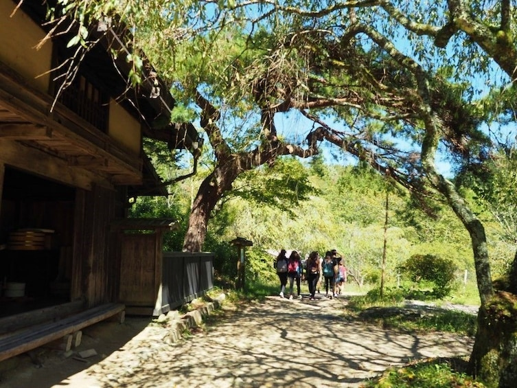 Show item 1 of 5.  3-DAY FROM/TO NAGANO: SNOW MONKEY & HISTORIC NAKASENDO WALK