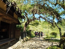 3-DAY FROM/TO NAGANO: SNOW MONKEY & HISTORIC NAKASENDO WALK