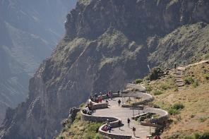 Colca Canyon Sightseeing Tour 2D/1N
