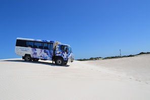 Lancelin 4WD Sand Dunes and Sand Boarding Adventure