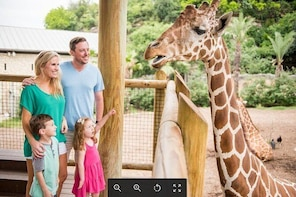 Skip the Line: San Antonio Zoo General Admission Ticket