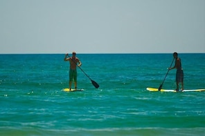 Economy Stand Up Paddle Board Hire on South Padre Island