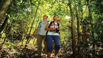 Private Tour of Taman Negara Jungle Trek & Canopy Walk