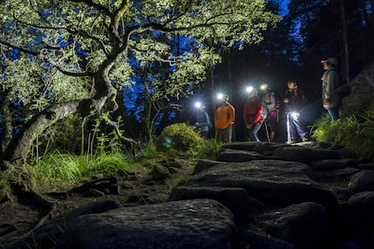 Outdoorlife Norway_ Preikestolen Sunrise Hike.20180715.2.jpg