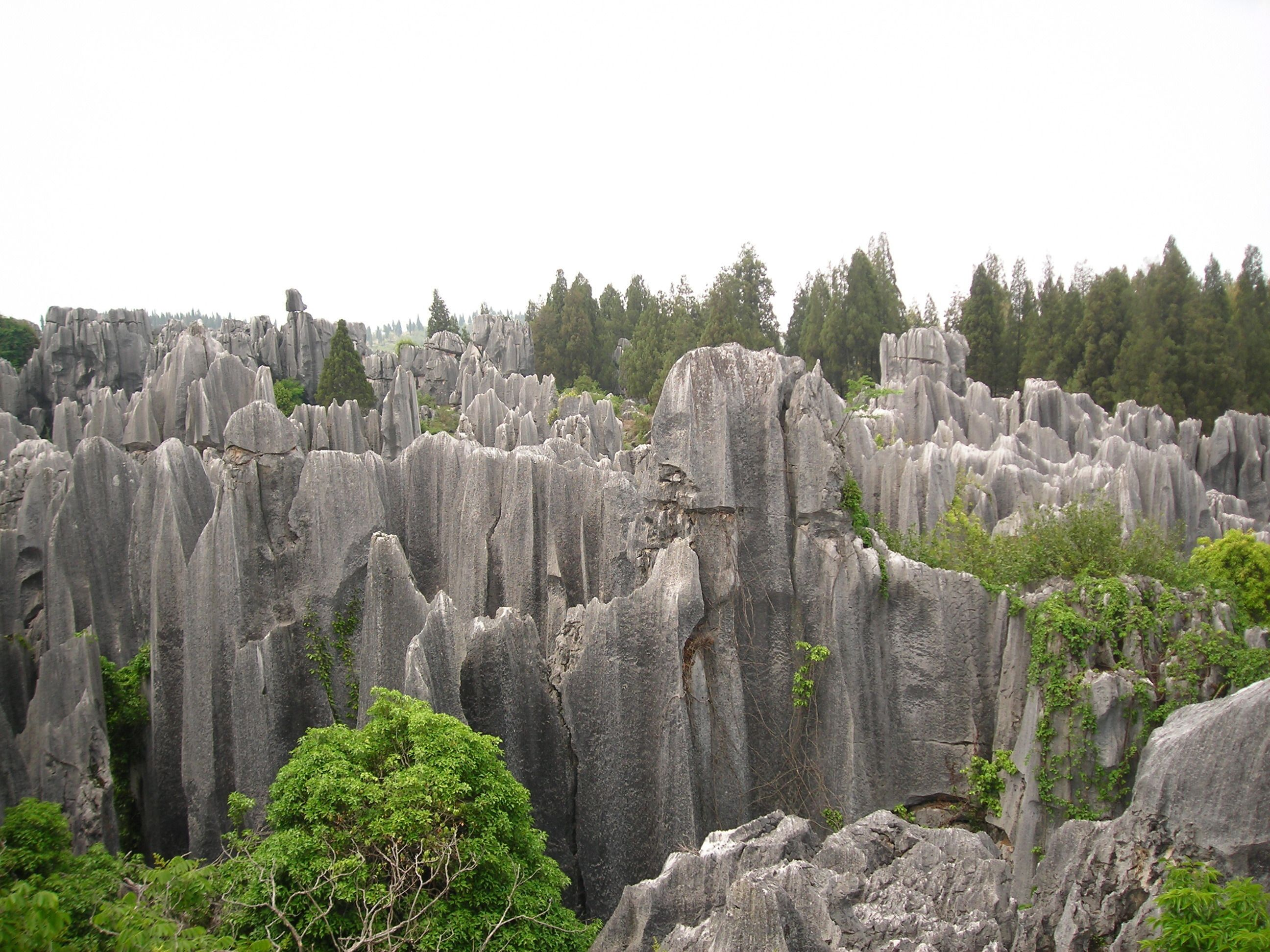 Private Day Tour: Stone Forests and Jiuxiang with Roasted Du