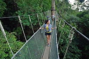 Kinabalu Park / Poring Hot Spring - Small Group Tour