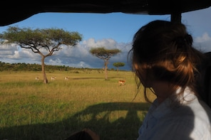 6 Days Uganda SafariGorilla Trekking&Tree-climbing Lions