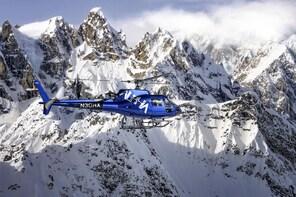 Denali Flightseeing & Mountaintop Landing - Talkeetna