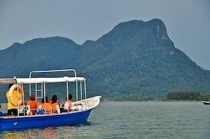Santubong Wildlife Cruise - Small Group Tour