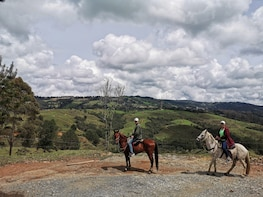 Horseback Riding in Medellin: A fun, Safe and Reliable Tour