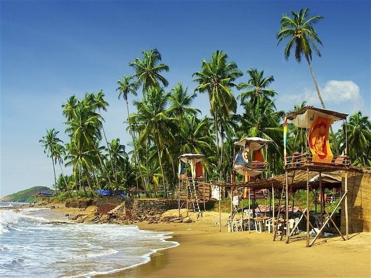 Show item 2 of 4. Honeymoon tour at Goa