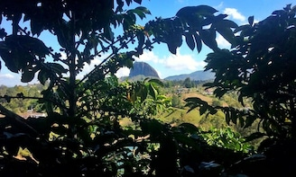 Guatape & Coffee Tour: All in one great day