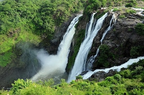 One Day Tour of Shivanasamudra Waterfalls&Ancient Somnathpur