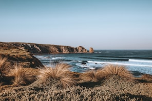 Small Group - Phillip Island Hike & Wildlife Day Tour