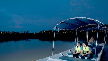Private Fireflies Tour With Seafood Dinner