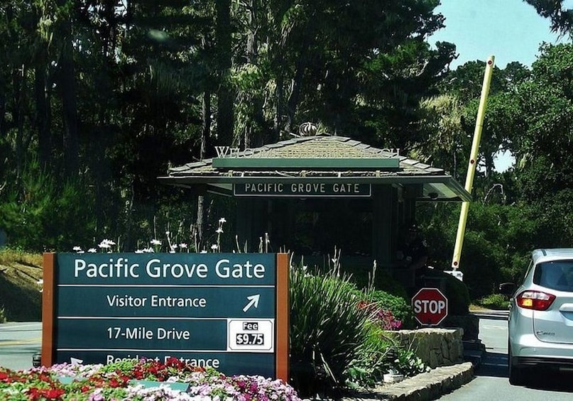Show item 2 of 10. Scenic 17-Mile Self Drive Audio Guide (Monterey & Carmel)