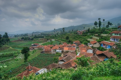 Misty and cloudy view of houses and paddy field in Ciwidey, West Java at Bandung (736)_M_388989229.jpg