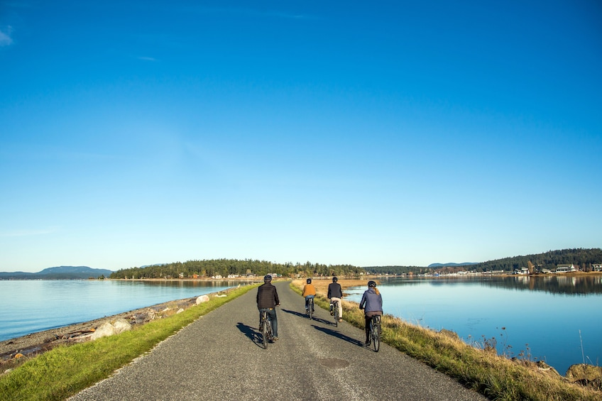 Bike Lopez Island, Bicycle Magazine's #1 Ride in Washington