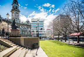 Dunedin City and Sights Tour