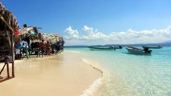 Cayo Arena Paradise Island Adventure from Puerto Plata