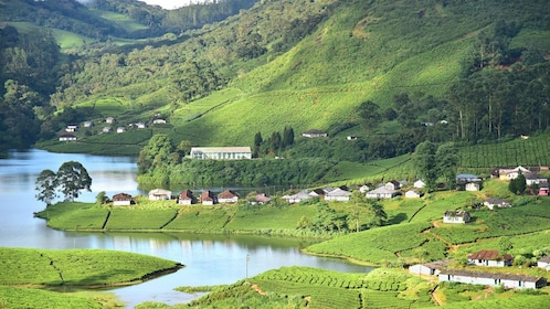 Private Day Tour for Munnar from Cochin