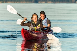 Kayak w. Seals on Lopez Island - Family Friendly Hire