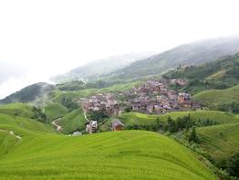Longji Rice Terraced Fields Day Tour From Guilin Or Yangshuo