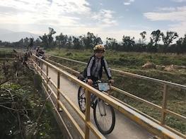 Full Day Cycling Hong Kong's Wild Side!