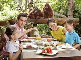 Singapore Zoo Ticket with Hotel Pickup