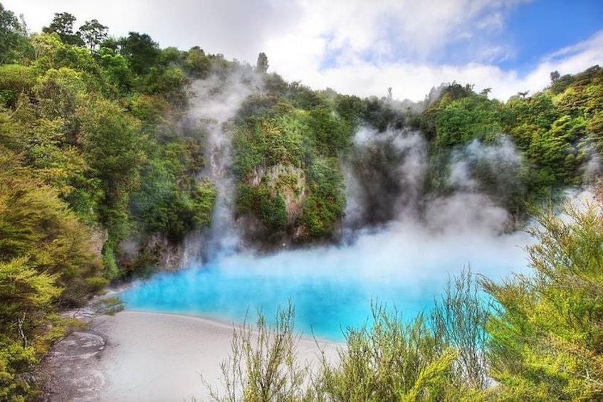 Show item 3 of 8. Waimangu Volcanic Valley  Option to add Wai-O-Tapu, Hobbiton