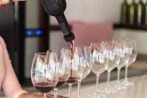 Wine tasting at Puerta del Lobo