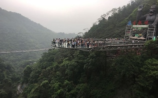 PRI Day Tour to Gulong Canyon Glass Bridge from Guangzhou