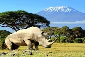 5 days to Amboseli,Tsavo west & East National Park