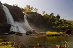 Private Day Tour: Athirappilly Falls from Kochi with Lunch