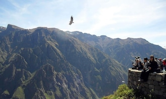 FULL DAY COLCA CANYON TOUR