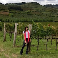 Curitiba Half-Day Wine Tour with Tasting