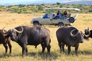 Garden Route Wildlife Safari - 4 Days