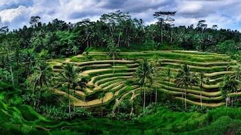 Bali Ubud Village Tour