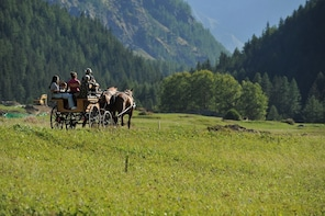 In Sleigh or Horse-Drawn Carriage in the Gran Paradiso Park
