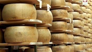 Parmigiano Reggiano Cheese Factory Tour from Parma
